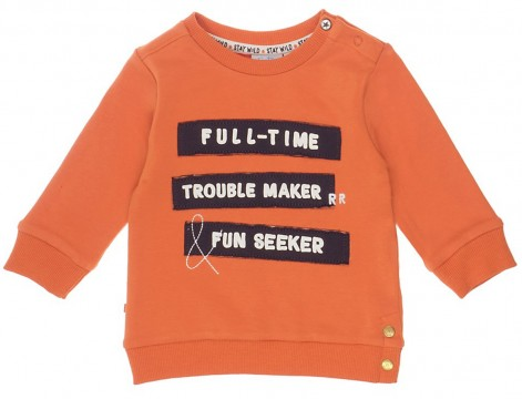 Sweatshirt in Rost Orange mi coolem 3D Print aus weichem BW Sweat von FEETJE 1353